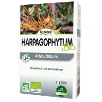 Biotechnie - Organic harpagophytum extract 20 doses