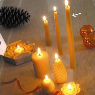 Ecodis - Beeswax Candles 24cm x 12
