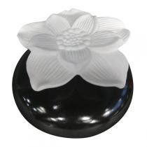 "Zen' Arôme - Duft - Diffusor "" Narzisse"""