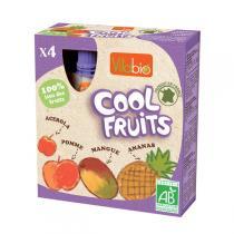Vitabio - Compote bio 100 % fruits en mini gourde, Cool Fruit, 4x90g