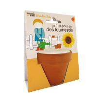 Graines en Folie - Organic Sunflower Seeds & Pot