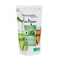 Destination - T'FREEZE Grüner Eistee Minze - 100g