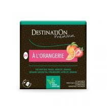 Destination - Grüner Tee  A l'Orangerie  - 15x2 g