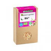 Germ'line - Lote de 2 paquetes de semillas para germinar Bio Trigo 200g