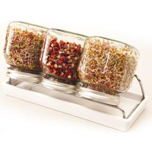 Eschenfelder - 3-Jar Sprouting Set