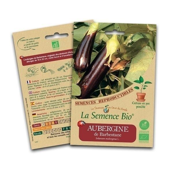 La Semence Bio - Graines d'Aubergine de Barbentane