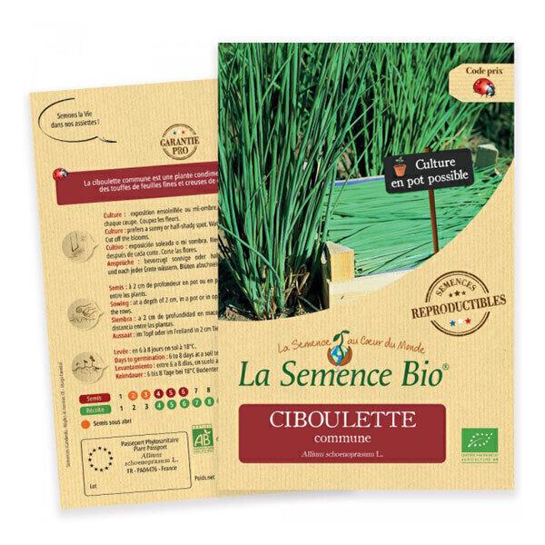 La Semence Bio - Graines de Ciboulette commune
