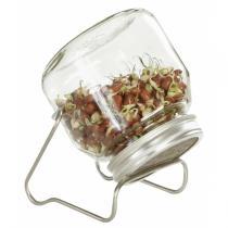 Eschenfelder - Germinador de vidrio con base