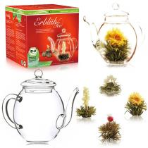 Green Corner 24 - Creano Abloom Tea Teapot Gift Box