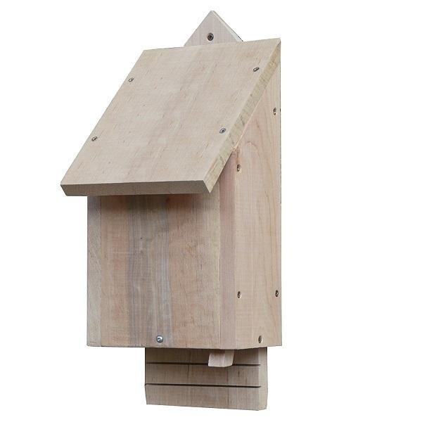 Wildlife World - Habitat simple pour chauve-souris