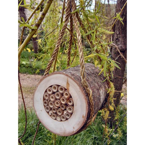 rondin pour abeilles wildlife world acheter sur. Black Bedroom Furniture Sets. Home Design Ideas