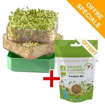 Germ'line - Angebot Keimgerät + Bio-Samen Bockshornklee
