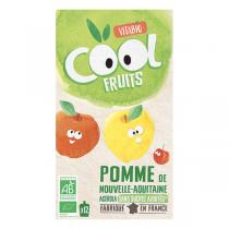 Vitabio - Cool fruits pomme acérola - gourdes de fruits- 12x90g