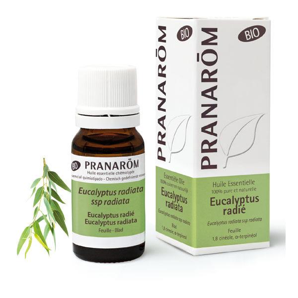 Pranarôm - Huile essentielle Eucalyptus radié Bio10ml