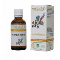 Herbiolys - Cerfeuil 50mL BIO - Chaerophyllum sativum
