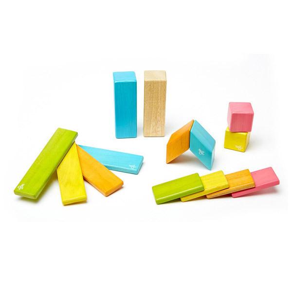 Tegu - Tints Magnetic Wooden Blocks - 14 Piece Set