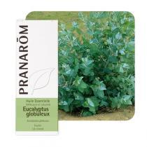 Pranarôm - Huile essentielle Eucalyptus globuleux 10 ml