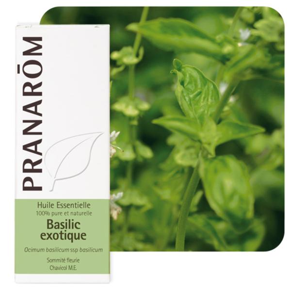 Pranarôm - Huile essentielle Basilic exotique 10 ml