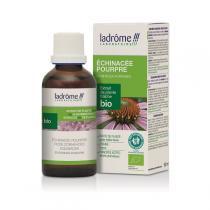 Ladrome - Plantes Fraîches ECHINACEE Bio Solidaire 50ml