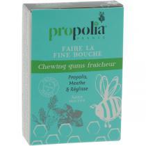 Propolia - Chewing Gum Propolis & Menthe Boîte 24 g
