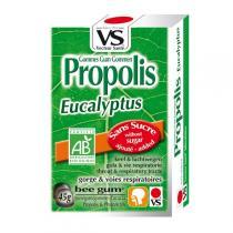 Vecteur Santé - Gommes propolis/eucalyptus bio 45g