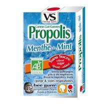 Vecteur Santé - Gommes propolis/menthe bio 45g