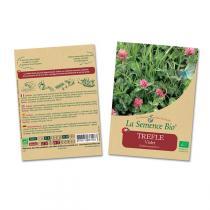 La Semence Bio - Graines TREFLE Violet