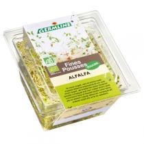 Germ'line - Alfalfa germé bio 75g