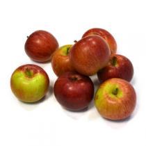 >Voir le rayon Fruits Bio