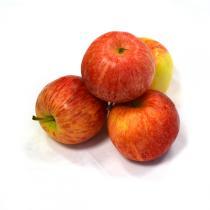 Les Paysans Bio - Pommes bicolores Gala Bio France x 4