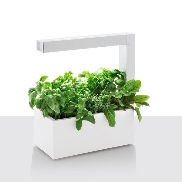 potager d 39 int rieur herbie led blanc tregren acheter sur. Black Bedroom Furniture Sets. Home Design Ideas