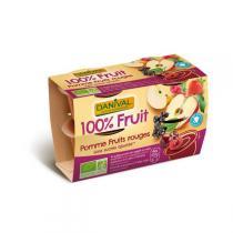 Danival - Purée Pommes-fruits rouges BIO 4 x 100g
