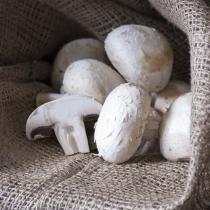 Les Paysans Bio - Champignons blancs Pieds coupés 200g