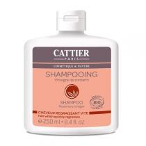 Cattier - SHAMPOO OILY HAIR - Rosemary Vinegar
