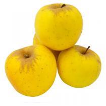Les Paysans Bio - Pomme jaune Italie Bio 4 fruits