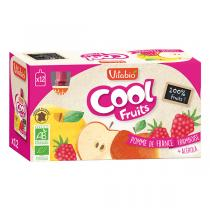 Vitabio - Cool Fruits Pomme Framboise - Gourdes de fruits - 12x90g