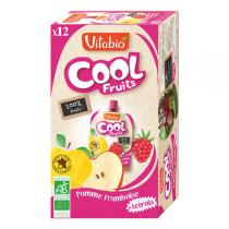 Vitabio - Compote Cool Fruits Pomme Framboise 12x90g