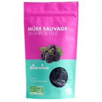 Biofruisec - Mûres sauvages d'Europe 100g