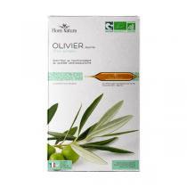 Flora Natura - Olivier feuilles bio - 20 ampoules