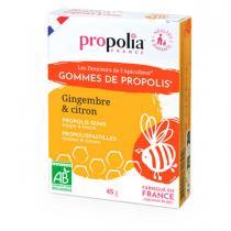 Propolia - Gommes propolis Bio Agave-Gingembre-Citron 45 g